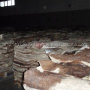 NEW Grade A+ Animal Dry and Wet Salted Donkey/Goat Skin /Wet Salted Cow Hides