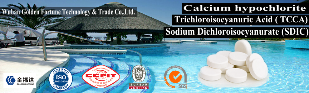 Calcium Hypochlorite 200g Tablet For Inflatable Spas 550