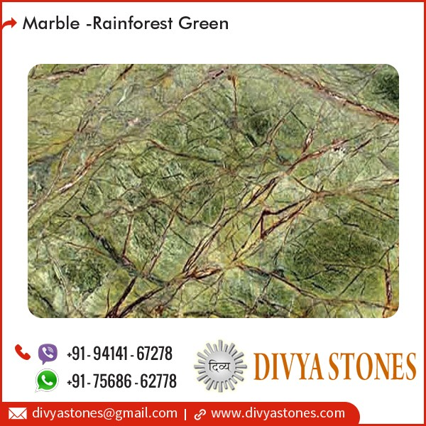 Polished Standard Rainforest Green Marble Slab Price Buy