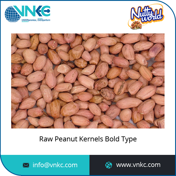 Excellent Quality Bold Type Raw Peanut Kernels Price