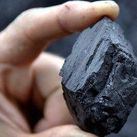 Steam Coal 7300-7000 Kcal/kg