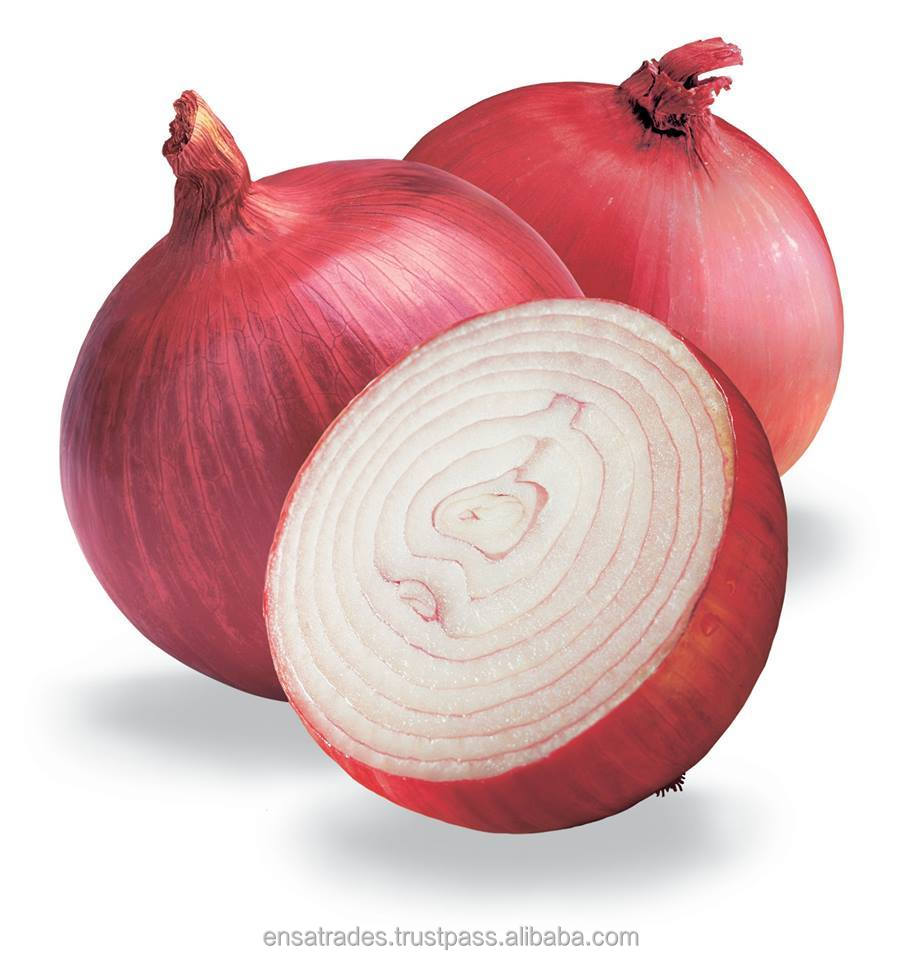 Red Onion for UAE Market | fresh red big onion from India | Buy Good Quallity Onion