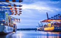 container sea freight to Vietnam Hanoi from zhongshan shenzhen guangzhou