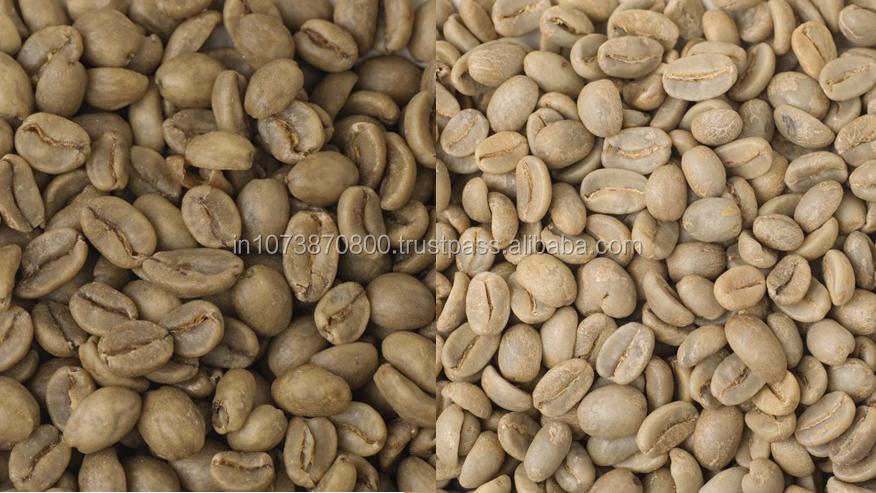 Travancore Arabica And Robusta Green Coffee Beans