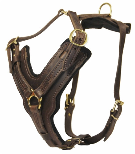 Custom Design Leather Dog Harness