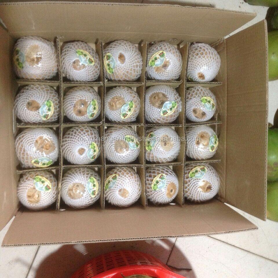 Full Husked Coconut For Korea Market // Mature Coconut - Whatsapp ...
