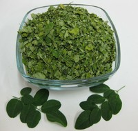 Moringa leaves for Saudi Arabia