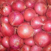 Red Onion India Exporter From SITCO