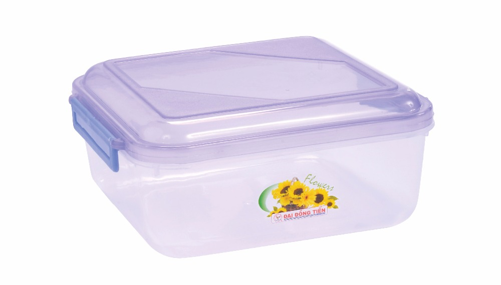 Rectangular plastic food container_DAI DONG TIEN CORPORATION