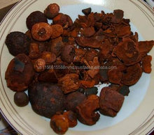 Ox Gallstones | Cattle Gallstones | Cow Gallstones Top Suppliers
