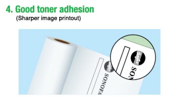 Plan Printing Paper / Plotter Roll (standard Grade)