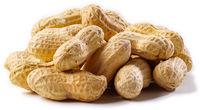 High Qualiy Peanuts in Shell