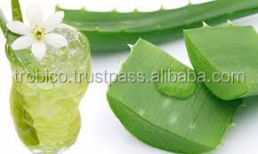 500ml Original Aloe Vera Juice Drink