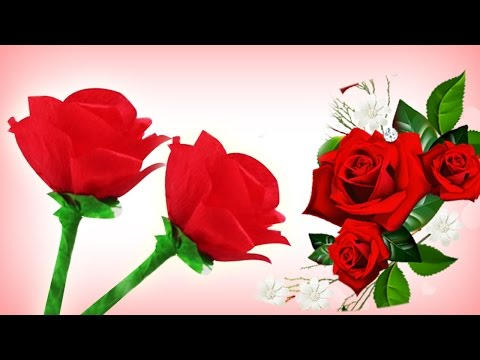 Making paper roses cheap abc tv how to make rose paper flower from latest get quotations paper flower making tutorial how to make paper roses easy diy gift ideas with making paper roses mightylinksfo