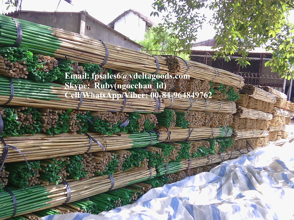 BAMBOO POLES/ MATERIALS FOR DECORATION-BEST PRICE FROM VIETNAM