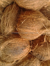 Fresh Semi coconut for UAE , Dubai, Mauritius , Malaysia.