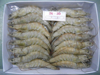 Frozen Head-on Shell-on Vannamei Shrimp - Buy Frozen ...