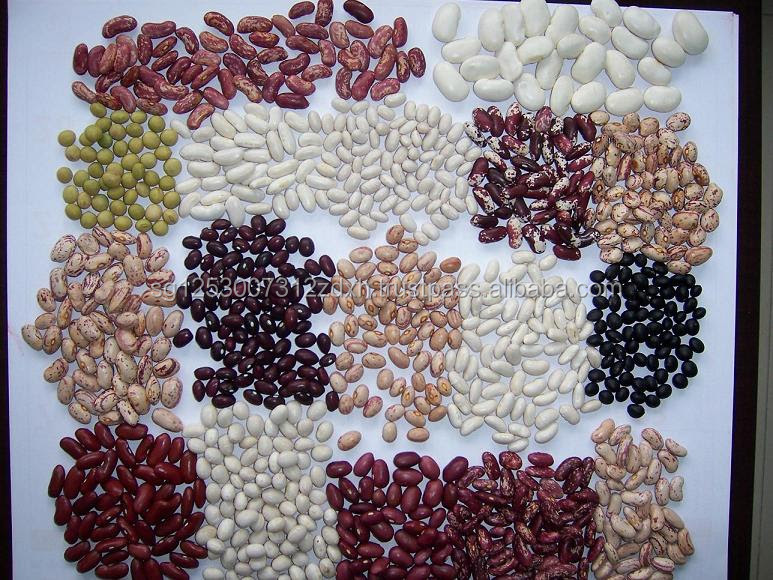 Cheap Price Red Kidney Beans