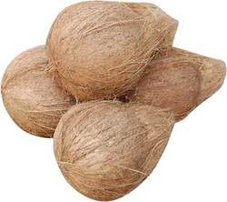 Big brown coconut with more water and coconut
