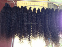 New model 2016 steamed curly hair weft 100% human hair for brazilian hair extension
