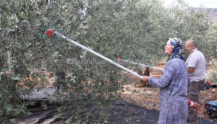 Electrical Olive Harvester Machine And Olive Shaking Machine For Selling -  Buy Olive Harvester,Electrical Olive Harvester Machine And Olive Shaking