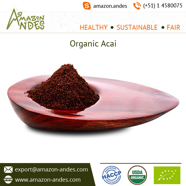 Acai Berry Powder and Capsules Available from Top Ranked Supplier