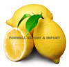 (citrus & juicy) lemons from Egypt