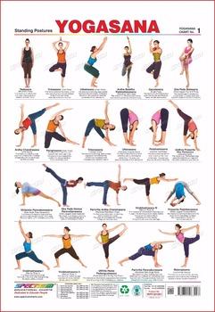 yogasana wall charts  buy yoga wall chartsyogasana