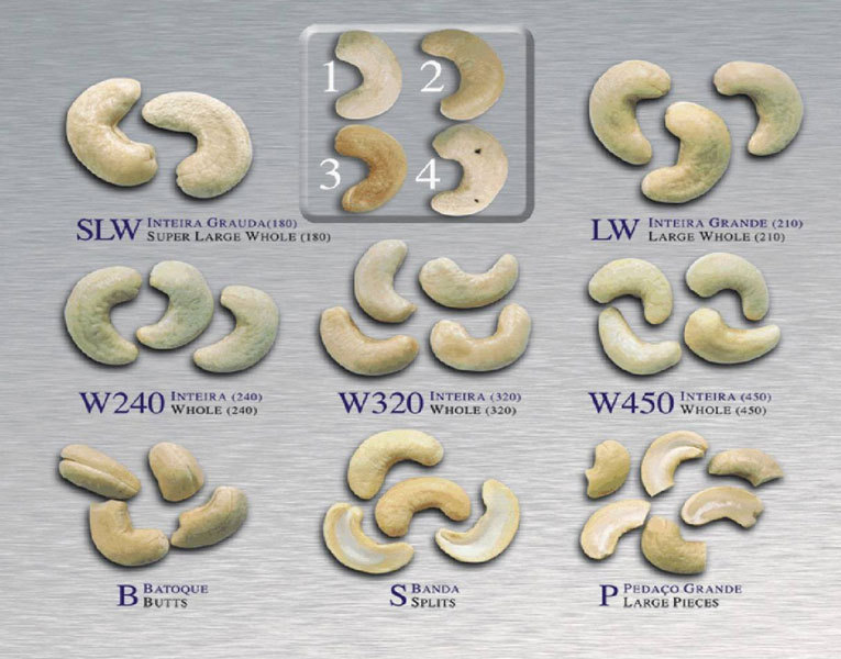 Vietnam Cashew Nuts/ Cashew Kernels/ Ww320/450/240/sw/bw/lbw/lp/sp - Buy  Raw Cashew Nuts,Raw Cashew Nut Vietnam,Cashew Nut Price Product on