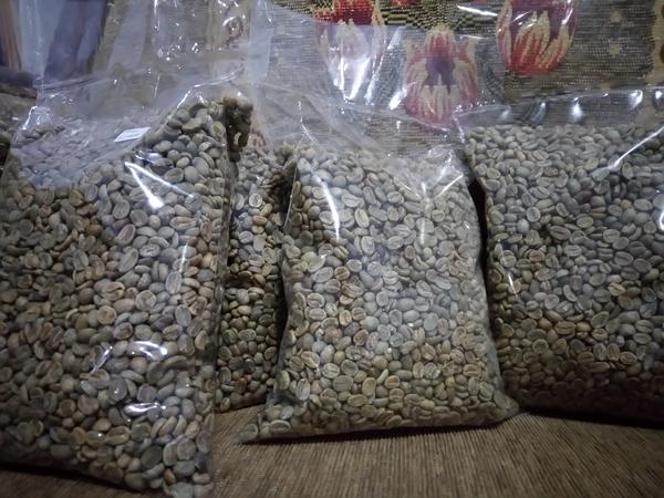 INDONESIA ARABICA GREEN COFFEE BEANS - BEST PRICE