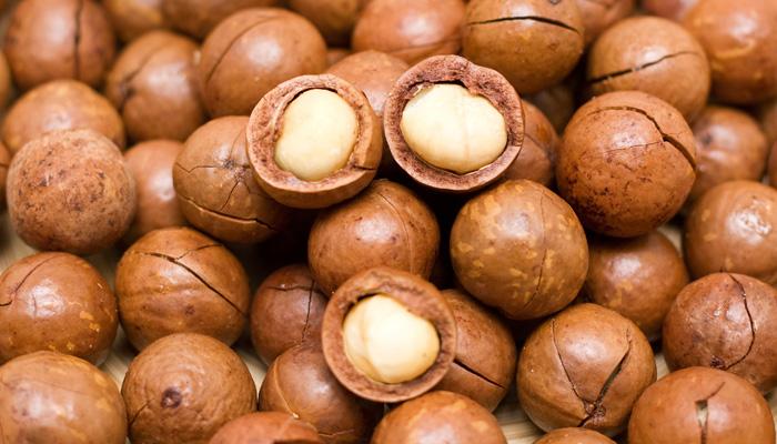 Kết quả hình ảnh cho Macadamia