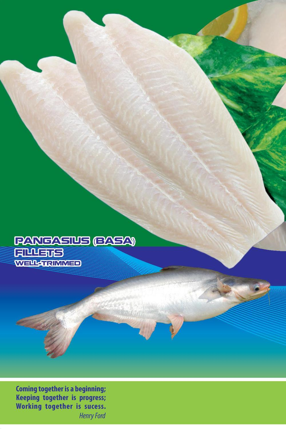 Frozen pangasius fillets buy frozen fish fillets for Picture of dory fish