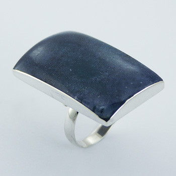 Chic Sterling Silver Rectangular Modern Natural Blue Coral Ring