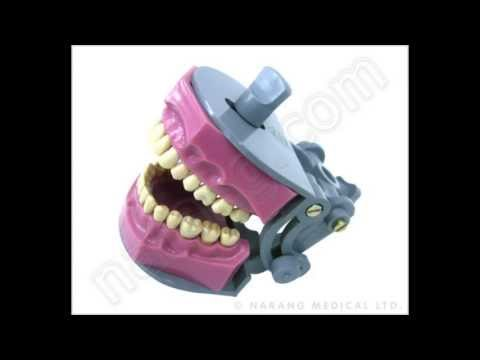 Dental Equipment | Dental Equipment Manufacturer | Dental Products Suppliers