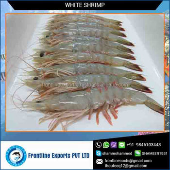 Seafood Frozen White Shrimp Hoso Wholesale Supplier - Buy Frozen White  Shrimp Wholesale,Best Quality Frozen White Shrimp,White Shrimp Whole At  Best