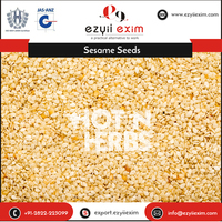 Selling Rich Quality Sesame Seeds for Bulk Buyers