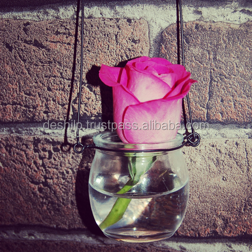 PURPUL CLR FLOWER HANGING,COLOR BOWL HANGING,CLEAR GLASS TERRARIUM HANGING,GLASS TEARDROP,GLASS PLANT TERRARIUM VASE