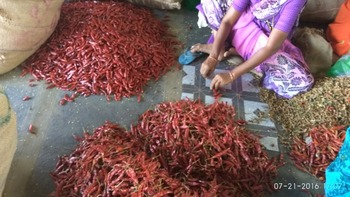 Best Quality Byadgi Steamless Red Chillies - Buy High Quality Indian Dry  Red Chilli,Supply Dry Red Chilli,Dry Hot Red Chilli Product on Alibaba com