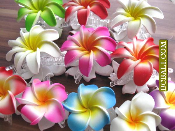 balinais tropical fleurs cheveux accessoires clips livraison gratuite comprennent bijoux de. Black Bedroom Furniture Sets. Home Design Ideas