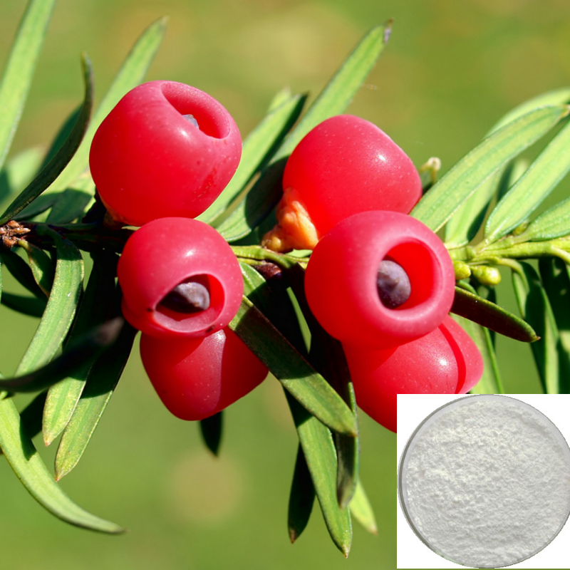 Pure Natural 10-DAB III Sourced Taxus Baccata