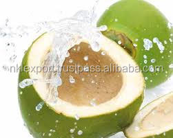 GREEN TENTER COCONUT WATER SOFT DRINK JUICES IN INDIA