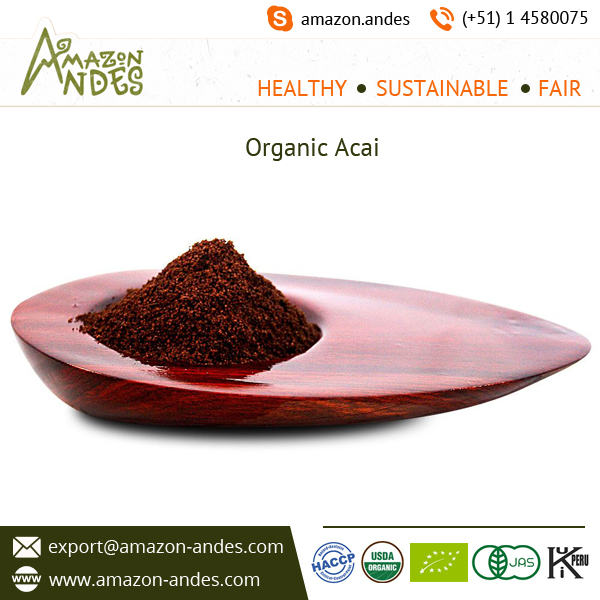 Organic Acai Berry Extract with High Nutritional Value at Reasonable Price