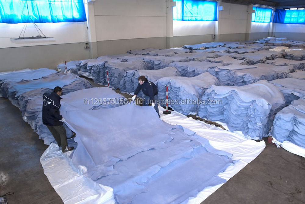 Wet Blue Cow Hides and Salted Cattle Skins