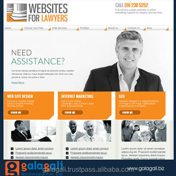 Professional B2C Website Design and Website App Development Service With Digital Marketing Service