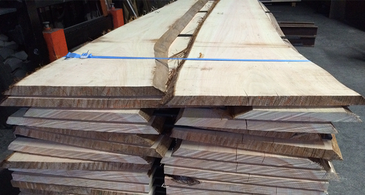 Beautiful Hinoki Wood Japanese Cypress Logs