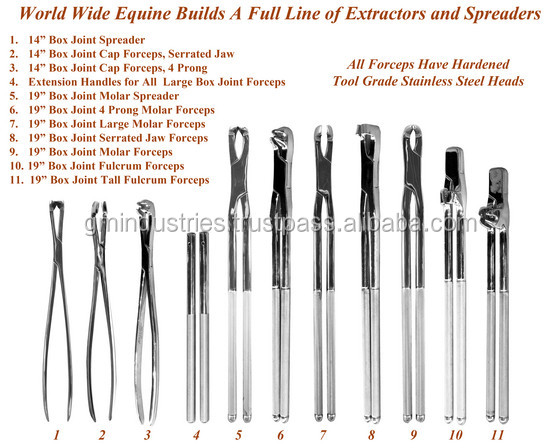 Equine dental instruments Set Veterinary Surgical Equipments Instruments