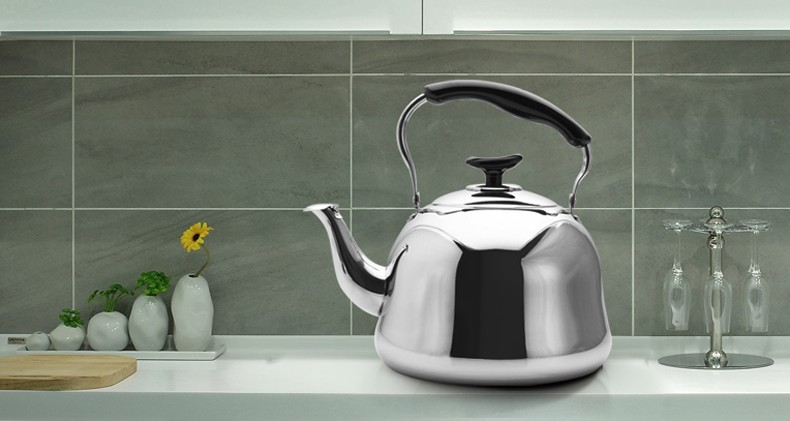 Hot sale Stainless Steel Tea Kettle
