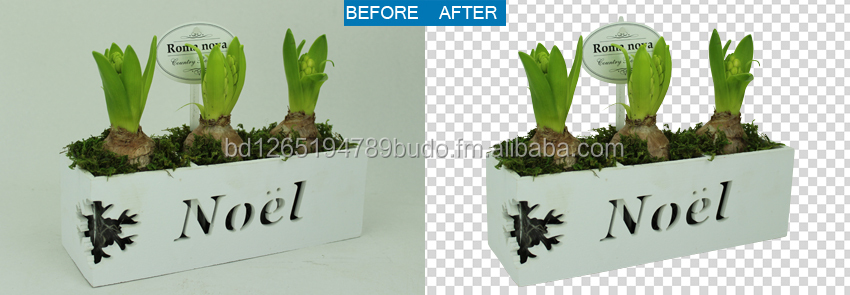 Clipping Path Services+ Background Remove from Images( Transparent or White Background)