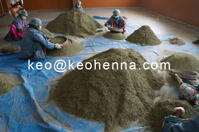Cheapest Real Triple Refined Best Selling Products Red Henna Blonde Powder Manufacturers