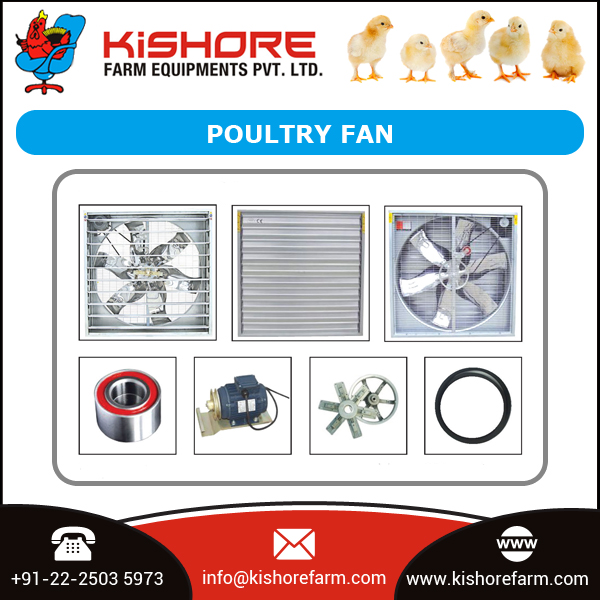 Hot Selling Product Poultry Ventilation Fan Manufacturer